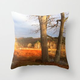 Delaware River Glowing Fall Foliage Throw Pillow