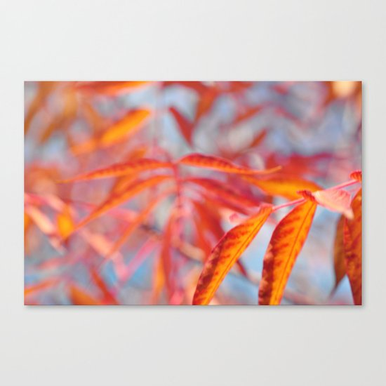Autumnal Bliss... Canvas Print