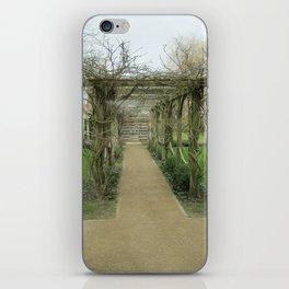 A Winding Way iPhone Skin