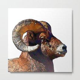 Ram Portrait Metal Print