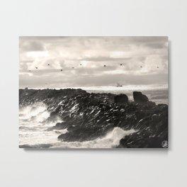 South Jetty, Oregon coast , pelicans Metal Print
