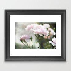 Petal Pink  Framed Art Print