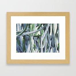 Green Crush Cactus I Framed Art Print