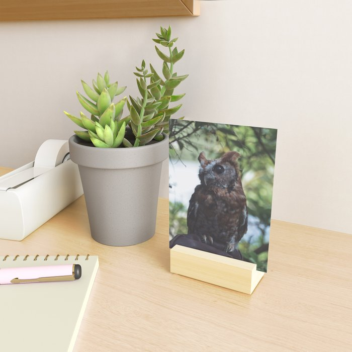 Cute Sweet Owl Mini Art Print