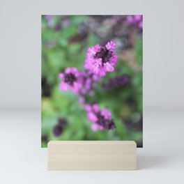 Pink Salvia Mini Art Print
