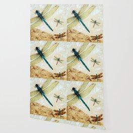 Zen Flight - Dragonfly Art By Sharon Cummings Wallpaper