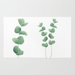 Eucalyptus polyanthemos leaves botanical illustration Rug