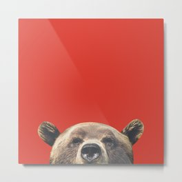 Bear - Red Metal Print