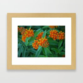 Nothing More, Nothing Less Framed Art Print