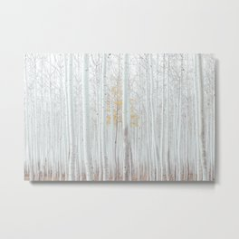 Pale Forest Metal Print