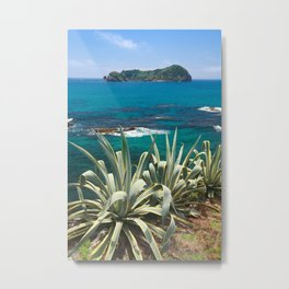 Islet and coastal vegetation Metal Print