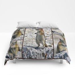 Chipmunk Collage Comforters