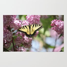 Swallowtail butterfly On Lilacs Rug