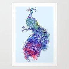Calm Blue Peacock Art Print