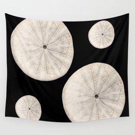 Sand dollars against black background Wall Tapestry