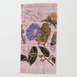 Botanical Study #4, Vintage Botanical Illustration Collage Art Beach Towel