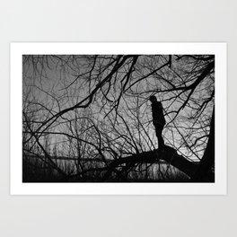 Boy in the Tree Art Print
