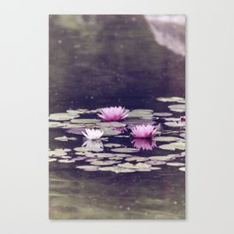 LOTUS I Canvas Print