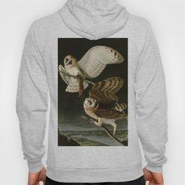 Barn Owl - Vintage Bird Illustration Hoody