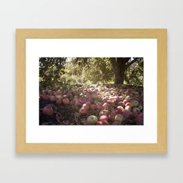Under the Apple Tree Framed Art Print