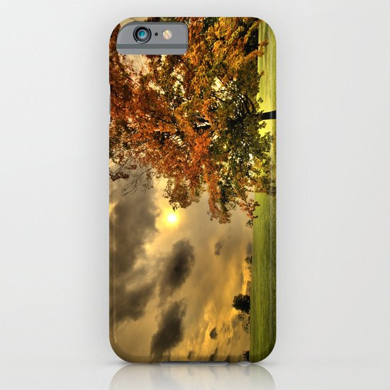 Red Maple Tree  iPhone & iPod Case