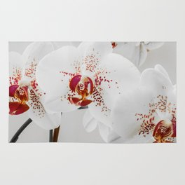 Black and White Orchid With Red Highlights Rug