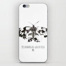 Butter flies - Melanargia_Galathea iPhone & iPod Skin