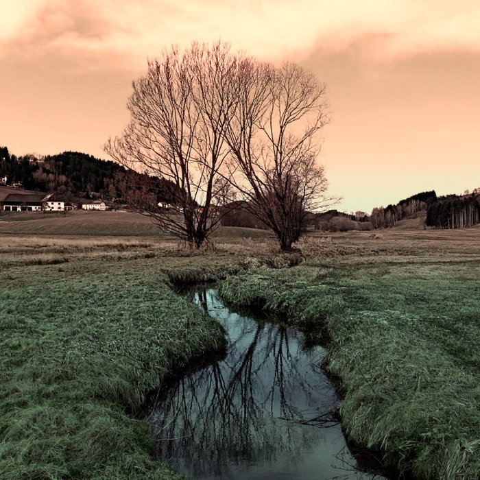 A stream, dry grass, reflections and trees II | waterscape photography Comforters
