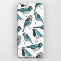 yetiland iPhone & iPod Skins featuring pale green birds by Polkip