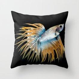 Multi-color betta fish, siamese fighting fish Throw Pillow
