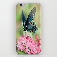 Spring Butterfly iPhone & iPod Skin