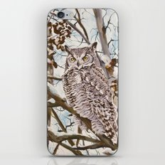 Sam's Great Horned Owl iPhone & iPod Skin