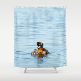 Eared Grebe Shower Curtain