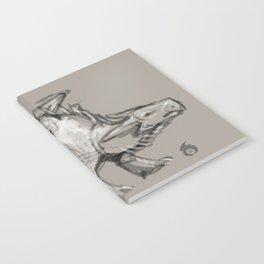 Dragon Sketch Notebook