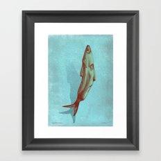 headfish... Framed Art Print