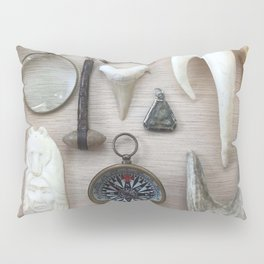 A Compass and Antlers and Artifacts, OH MY! Pillow Sham
