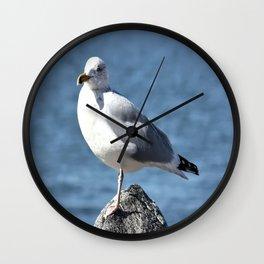 Seagull Wall Clock