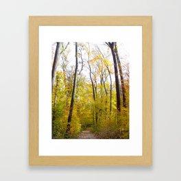 Iroquois Park in Autumn Color Framed Art Print