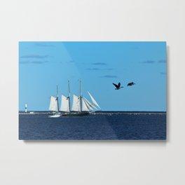 Sails & Geese Metal Print