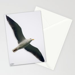 Simple Seagull Stationery Cards