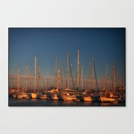 Moon over Amble Canvas Print