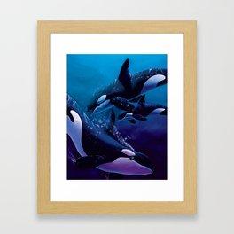 A Family Affair - Orcas Framed Art Print
