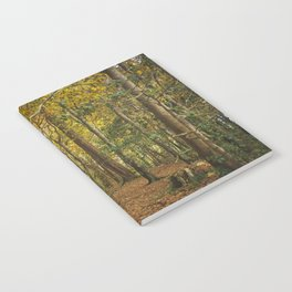 Fairy Woods Notebook