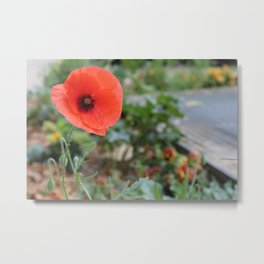 Poppies of Paris Metal Print