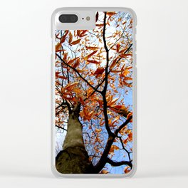 Autumn's glory Clear iPhone Case