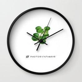 # Photosynthesis Wall Clock