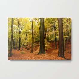 songs from the wood Metal Print