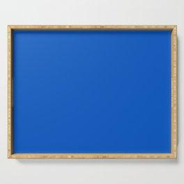Royal Blue Solid Matte Colour Palette Serving Tray
