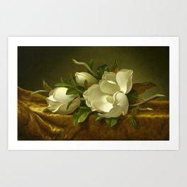 Martin Johnson Heade - Magnolias on Gold Velvet Cloth Art Print