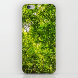 Scenic Caves Trees iPhone Skin